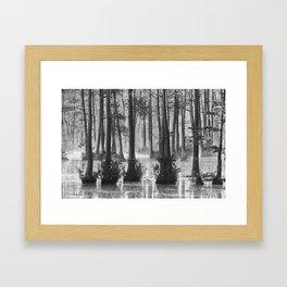 Adams Mill Pond 39 B&W Framed Art Print