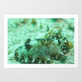 Rough Diamond Nudibranch Art Print