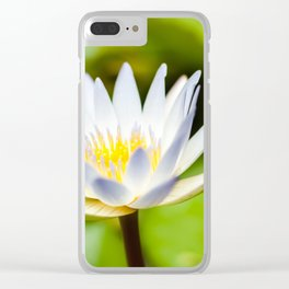 Single White Lotus Water Lily of Kauai, Hawaii Clear iPhone Case