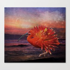 If an ibis became a dahlia Canvas Print
