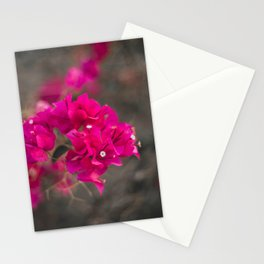 Bougie with the Bougainvillea Stationery Cards