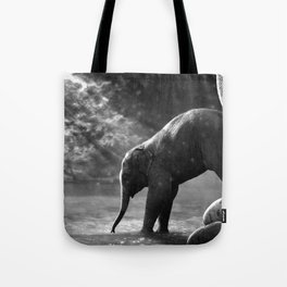 Baby elephant with mother Tote Bag