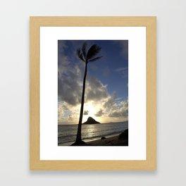Palm at Mokoli'i Framed Art Print