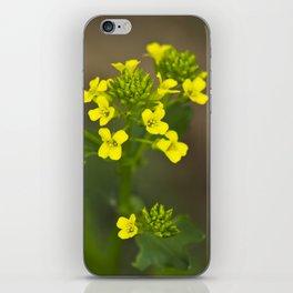 Wintercress Wildflowers iPhone Skin