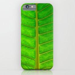 Palm Print iPhone Case