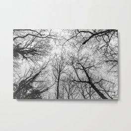 Creepy tree tops, black and white Metal Print