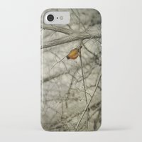 robin iPhone & iPod Cases featuring Robin by Dorothy Pinder