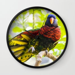Rainbow Lorikeet Stretching His Wing Wall Clock