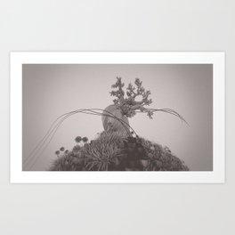 Pinus Longaeva /ˈvɒksɛl/ Art Print