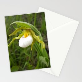 Small White Lady's Slipper Stationery Cards