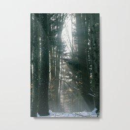 sunrays Metal Print