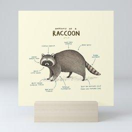 Anatomy of a Raccoon Mini Art Print
