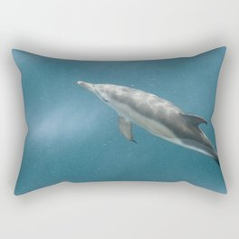 Subsurface Rectangular Pillow