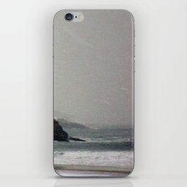 Eagle Head iPhone Skin