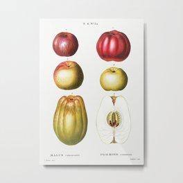 Vintage Apple Poster Metal Print