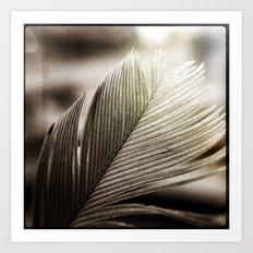 Feather Tip Art Print