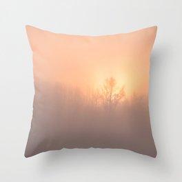 Ice Fog on the Bow Throw Pillow