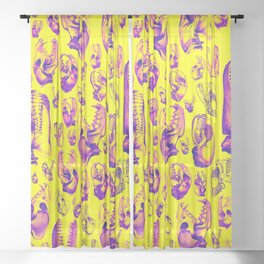 Carnivore HOT PINK & YELLOW / Animal skull illustrations from the top of the food chain Sheer Curtain