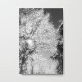 Christmas ice storm Metal Print