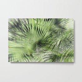 Tropical Palm II Metal Print
