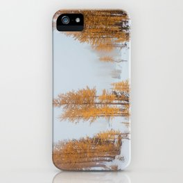 Vibrant Larch Trees iPhone Case