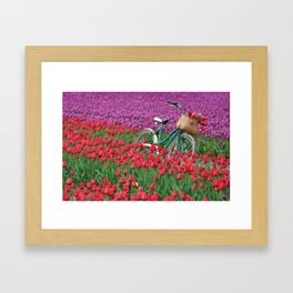 Tulips and bicycle Framed Art Print