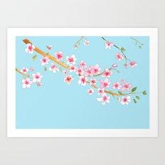 Cherry Blossom II Art Print