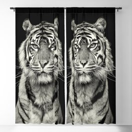 Tiger Blackout Curtain