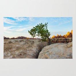 Persistent Tree Rug