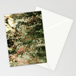 Flowers in the sun Stationery Cards