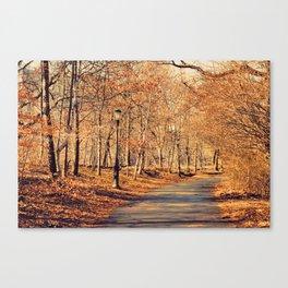 colors. Canvas Print