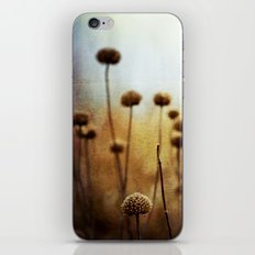 Where the Night Runs Into the Day iPhone & iPod Skin