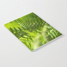 Green Fern Abstract Notebook