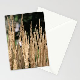 Nature22 Stationery Cards
