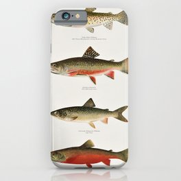 Illustrated North American Freshwater Trout Game Fish Identification Chart iPhone Case