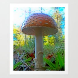 Storybook Shroom Art Print