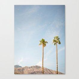 Palm Tree Pair Canvas Print