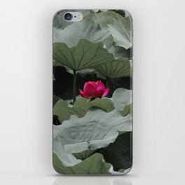 Nature's Pink iPhone Skin