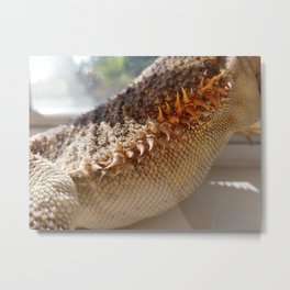 Bearded Dragon Metal Print