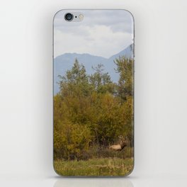 Bull Elk with Fall Colors iPhone Skin