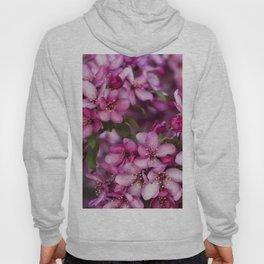 Pink Flowers Hoody