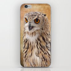 Eagle Owl iPhone & iPod Skin