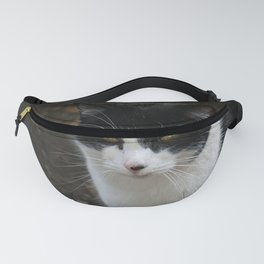 Black and White cat Fanny Pack
