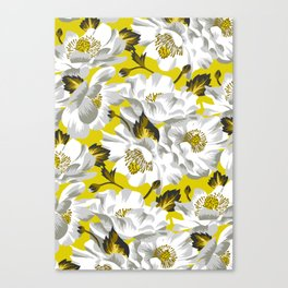 Mount Cook Lily - Yellow/White Canvas Print