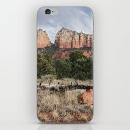 Fallen tree Sedona Arizona iPhone Skin