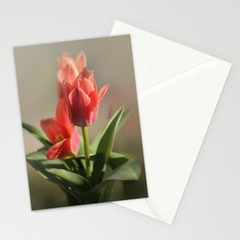 Dreamy Tulips Stationery Cards