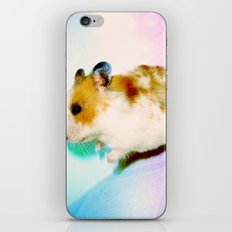 Pixi the Hamster iPhone & iPod Skin
