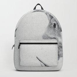Rabbit 25 Backpack