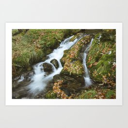 Woodland stream waterfall near Buttermere. Lake District, UK. Art Print