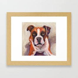 Rascal the Boxer Framed Art Print